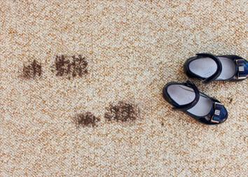 Чем и как почистить ковролин от пятен